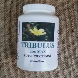 TRIBULUS 200 MAX - Kotvičník zemní – STIMULANT
